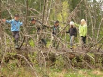 gallery/dscn2024 copy
